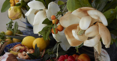 Magnolias and Food. Stock photo