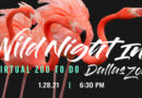 Dallas Zoo's Largest Annual Fundraiser Goes VIRTUAL for the First Time!